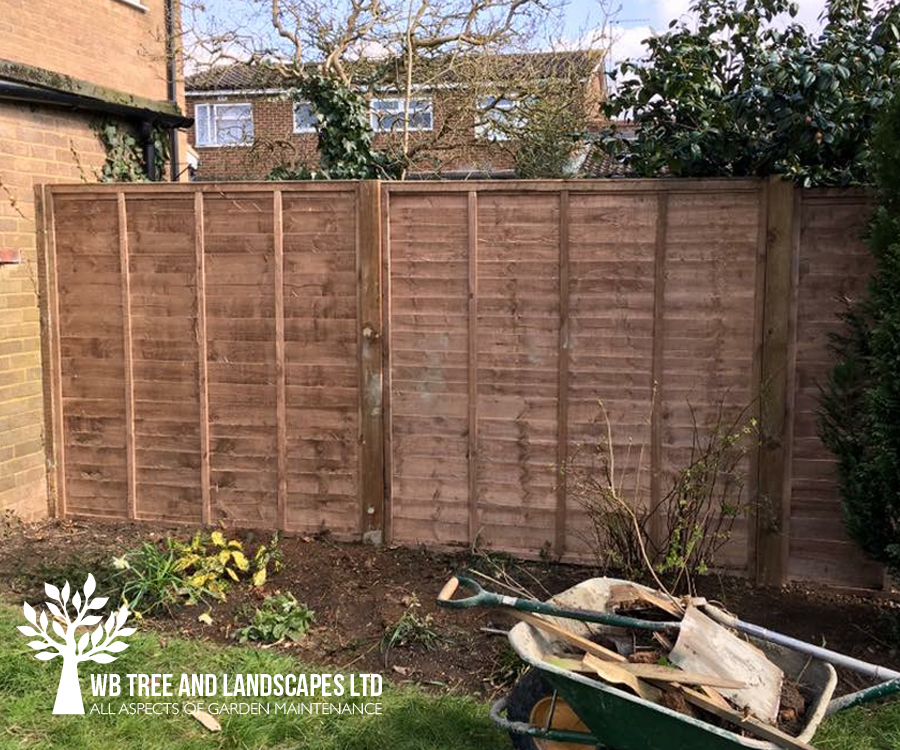 Gardening, WB Tree and Landscapes Ltd, Hertford