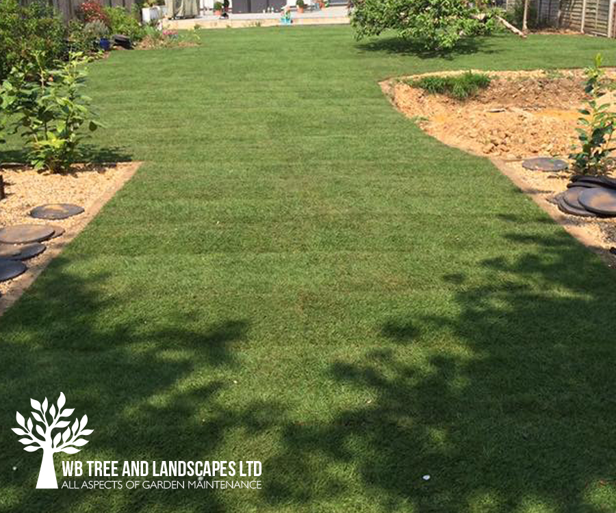 New Lawn, WB Tree and Landscapes Ltd, Hertford